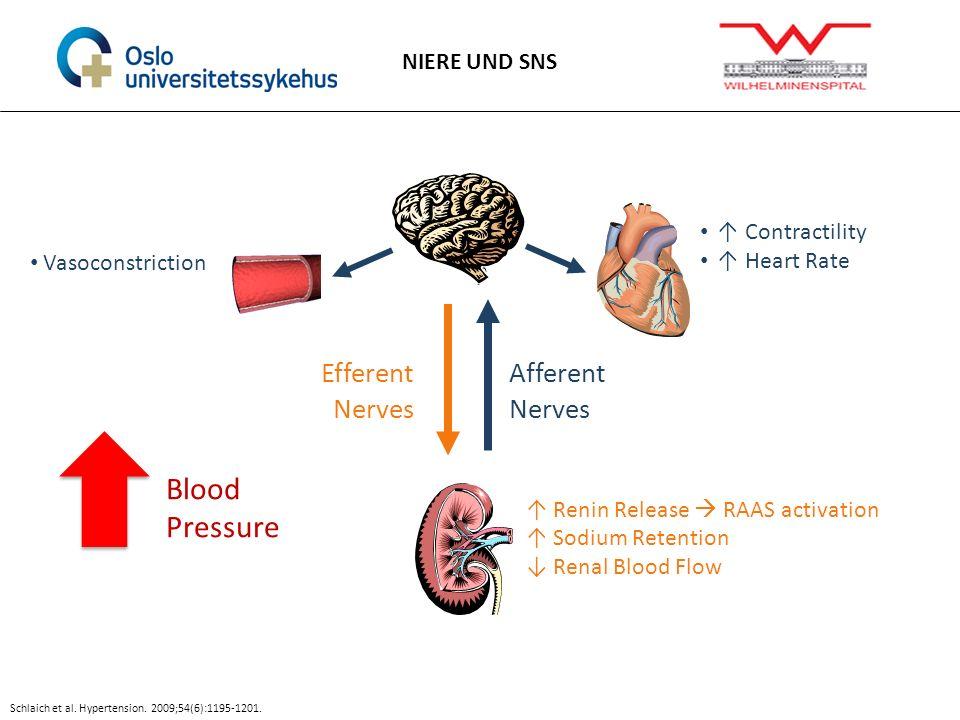Blood Pressure Efferent Nerves Afferent Nerves NIERE UND SNS