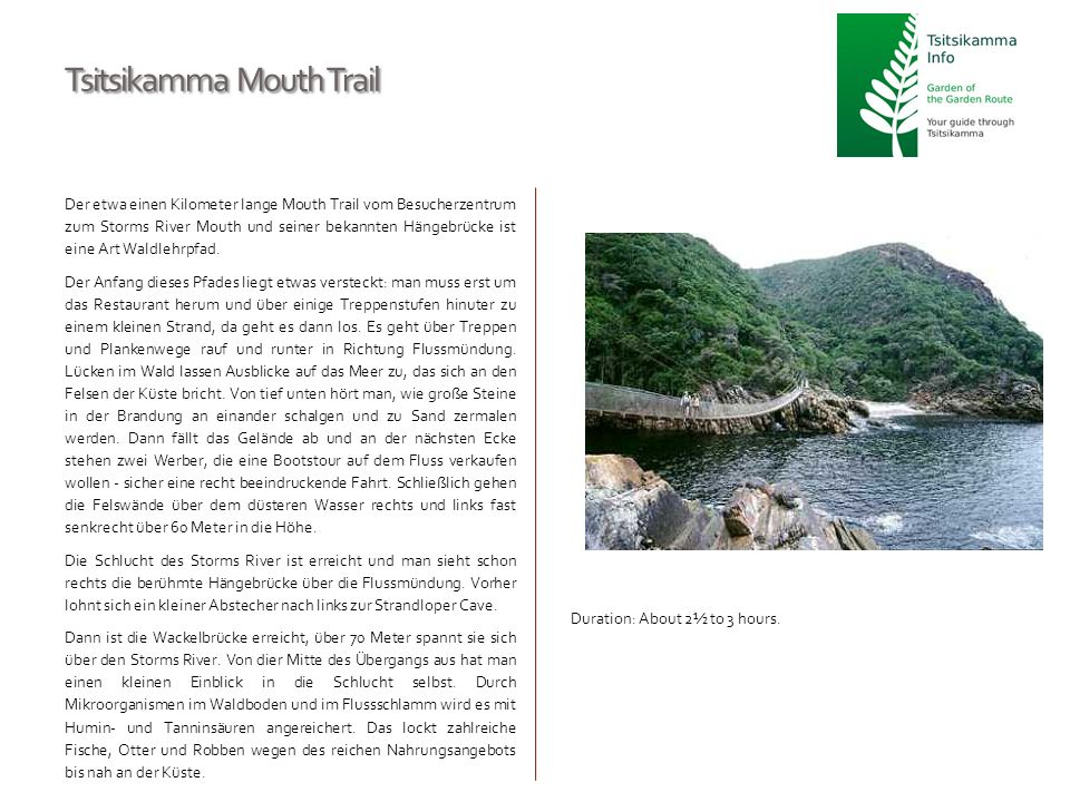 Tsitsikamma Mouth Trail