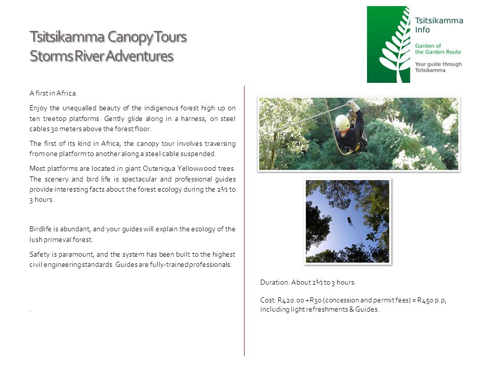 Tsitsikamma Canopy Tours Storms River Adventures