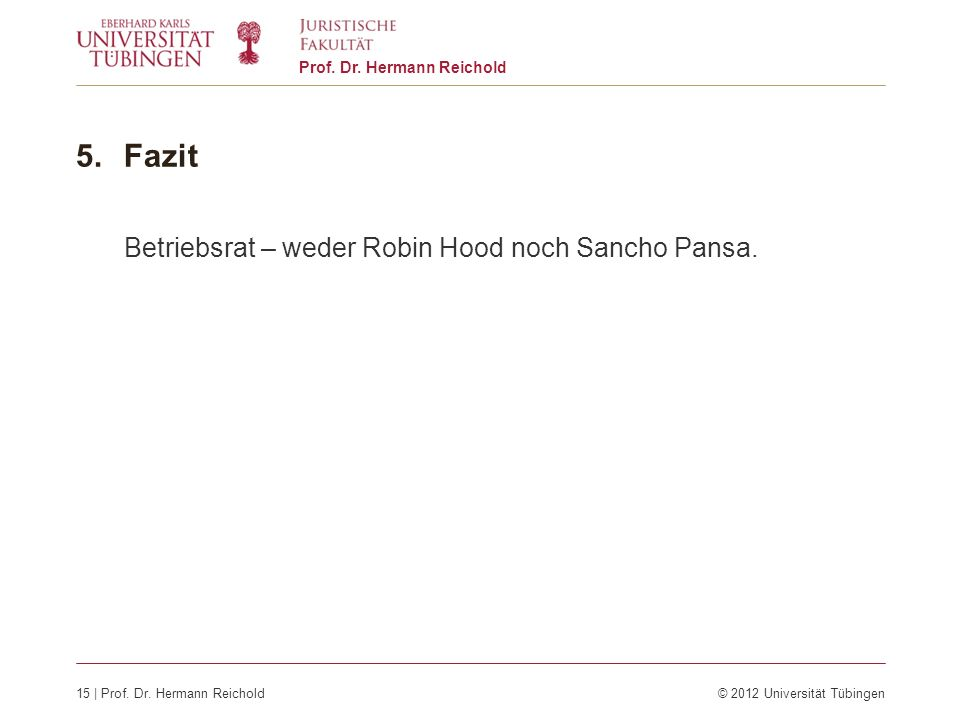 Fazit Betriebsrat – weder Robin Hood noch Sancho Pansa.