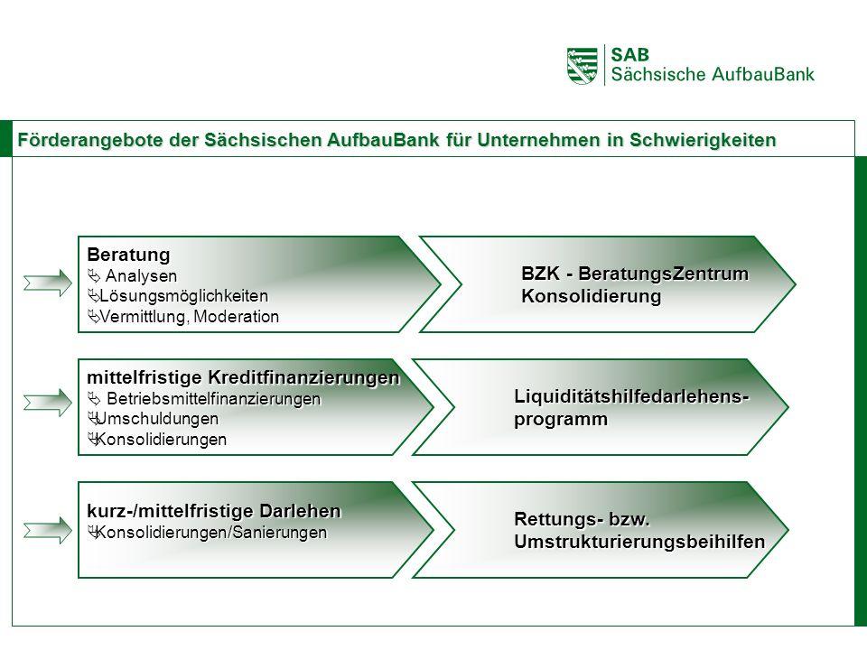 BZK - BeratungsZentrum Konsolidierung