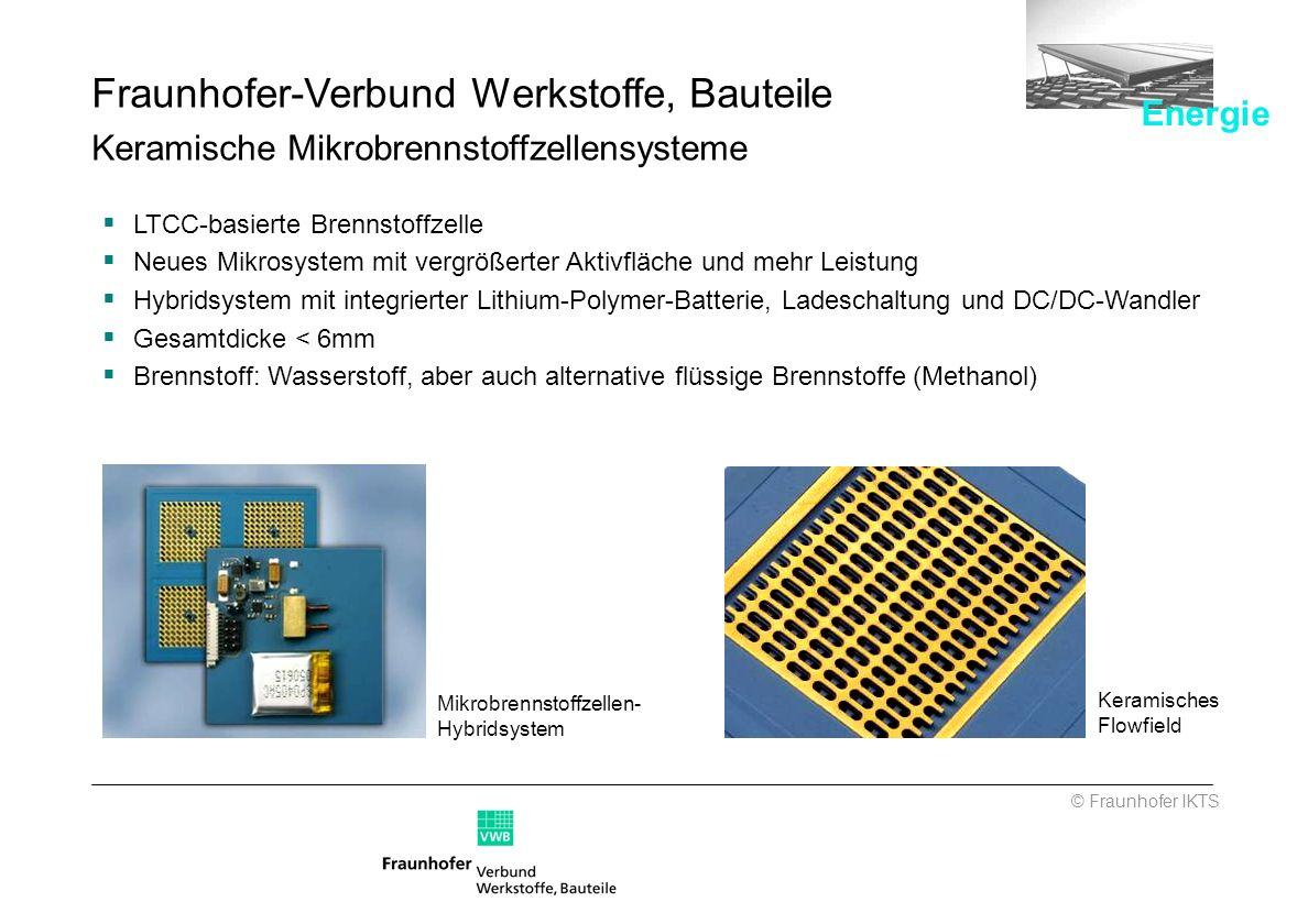 Fraunhofer-Verbund Werkstoffe, Bauteile Keramische Mikrobrennstoffzellensysteme