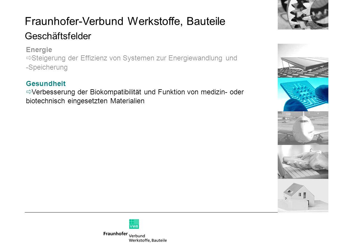 Fraunhofer-Verbund Werkstoffe, Bauteile Geschäftsfelder