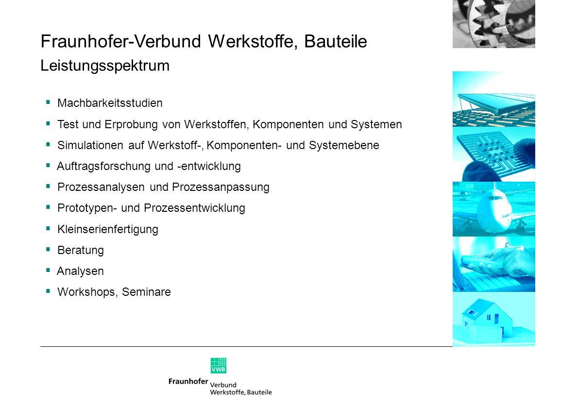 Fraunhofer-Verbund Werkstoffe, Bauteile Leistungsspektrum