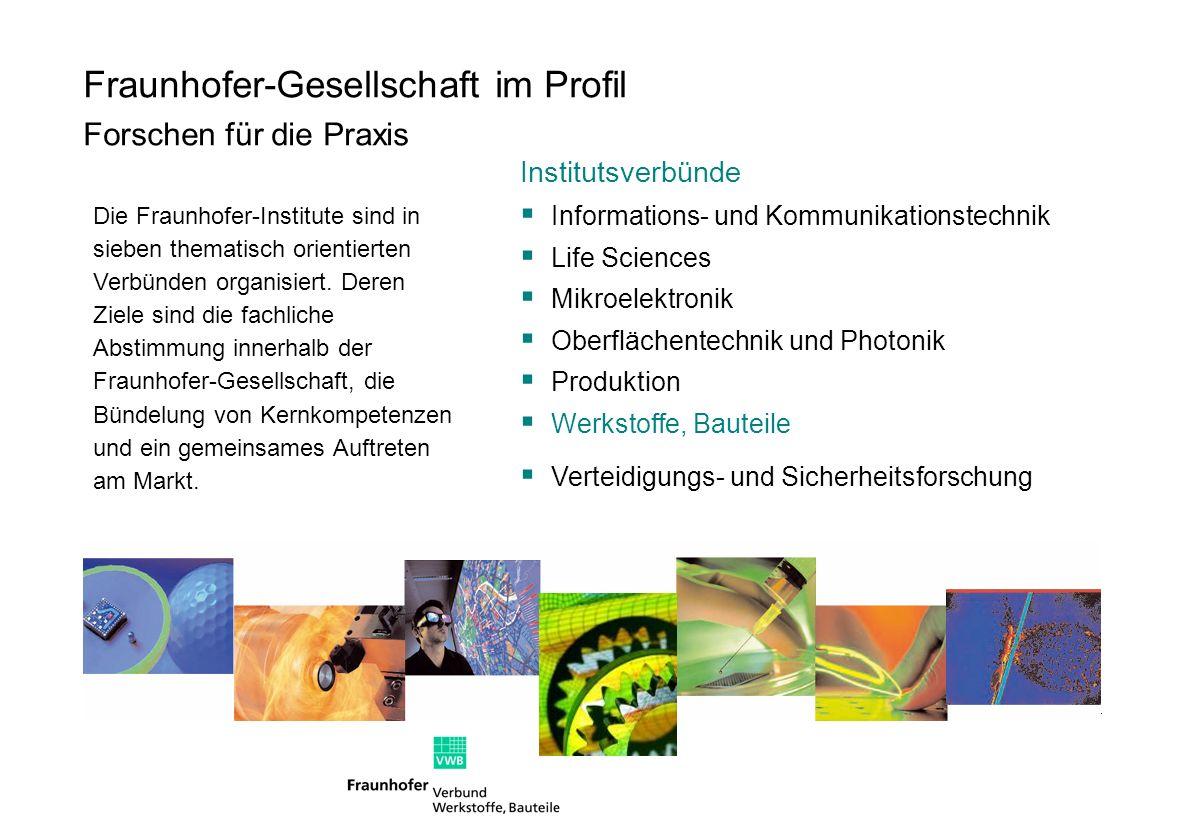 Fraunhofer-Gesellschaft im Profil Forschen für die Praxis