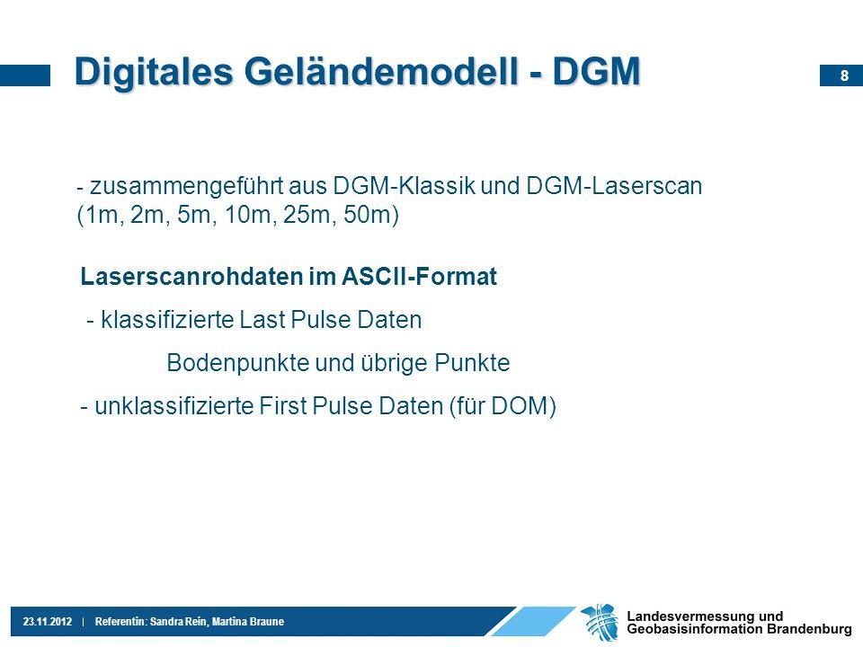 Digitales Geländemodell - DGM