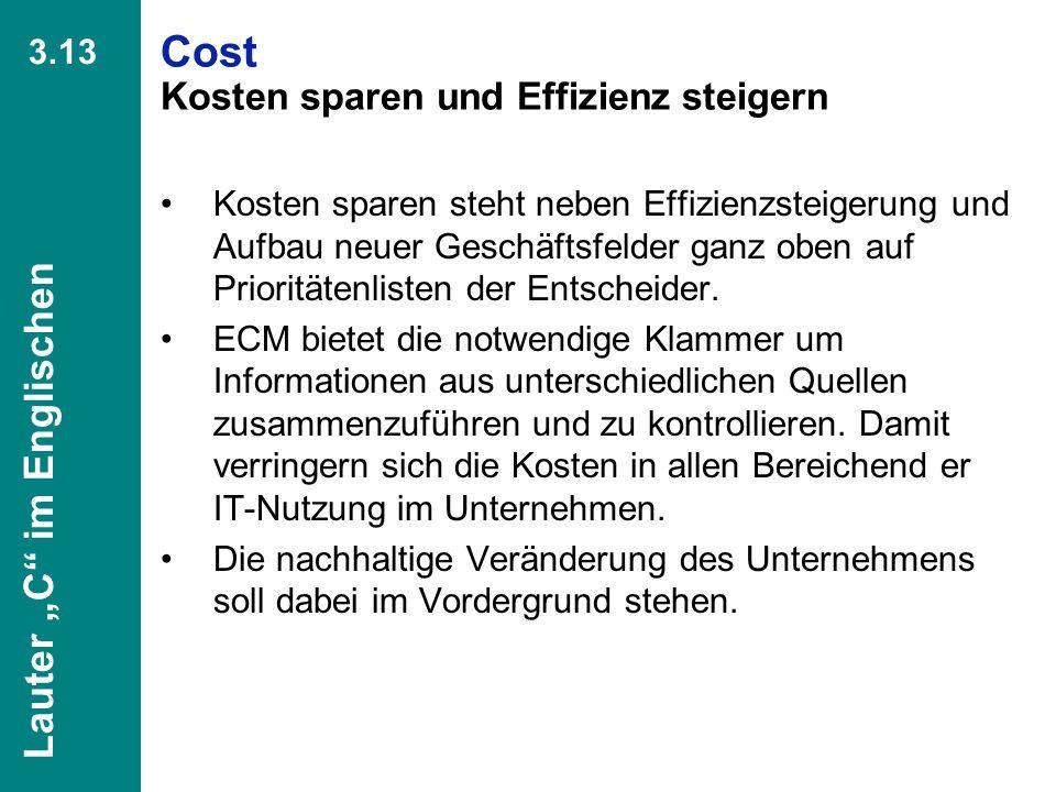 Cost Kosten sparen und Effizienz steigern