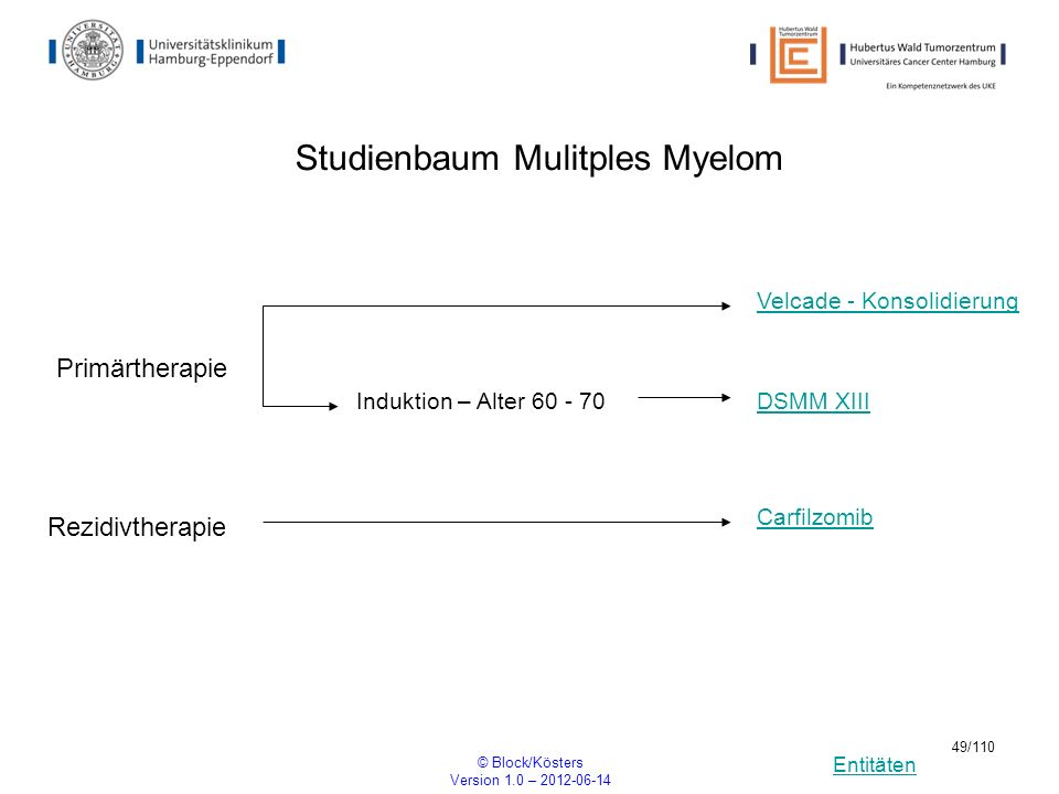 Studienbaum Mulitples Myelom