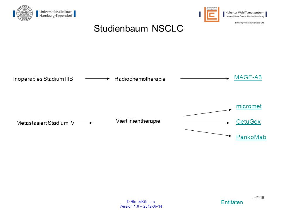 Studienbaum NSCLC MAGE-A3 micromet CetuGex PankoMab