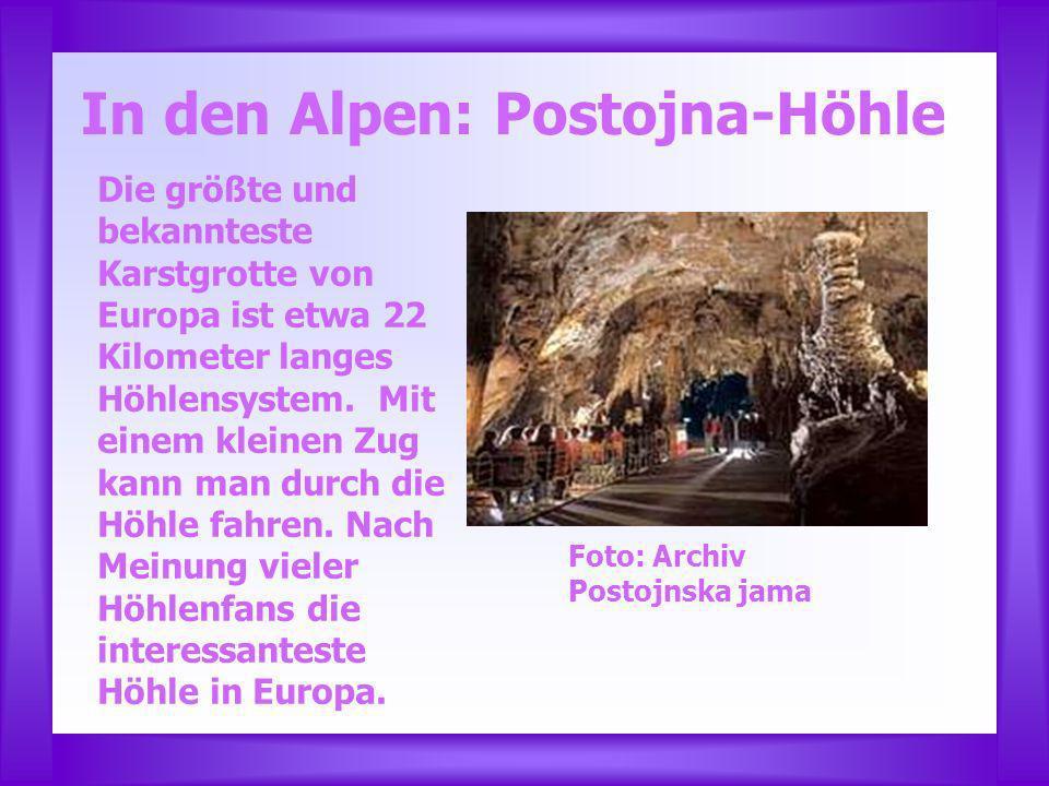 In den Alpen: Postojna-Höhle