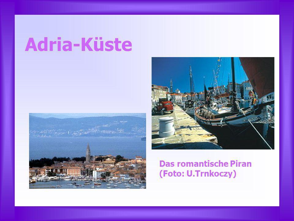 Adria-Küste Das romantische Piran (Foto: U.Trnkoczy)