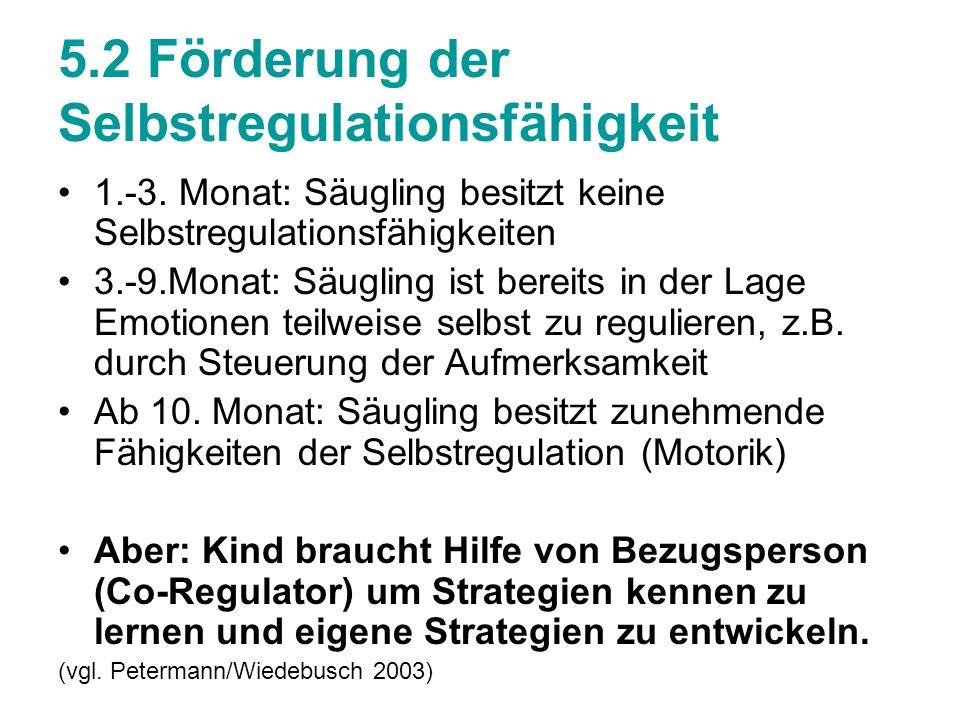 5.2 Förderung der Selbstregulationsfähigkeit