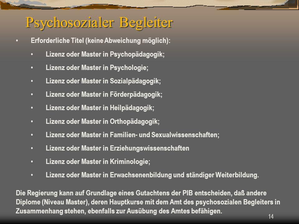 Psychosozialer Begleiter