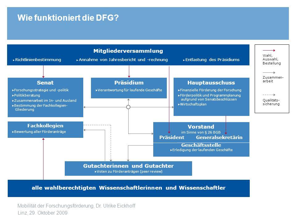 Wie funktioniert die DFG