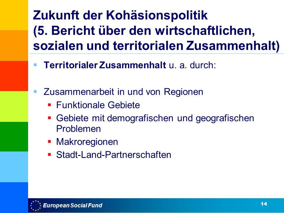 Zukunft der Kohäsionspolitik (5