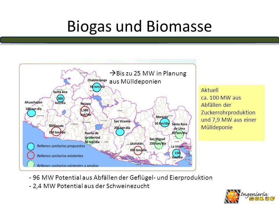 Biogas und Biomasse Bis zu 25 MW in Planung aus Mülldeponien