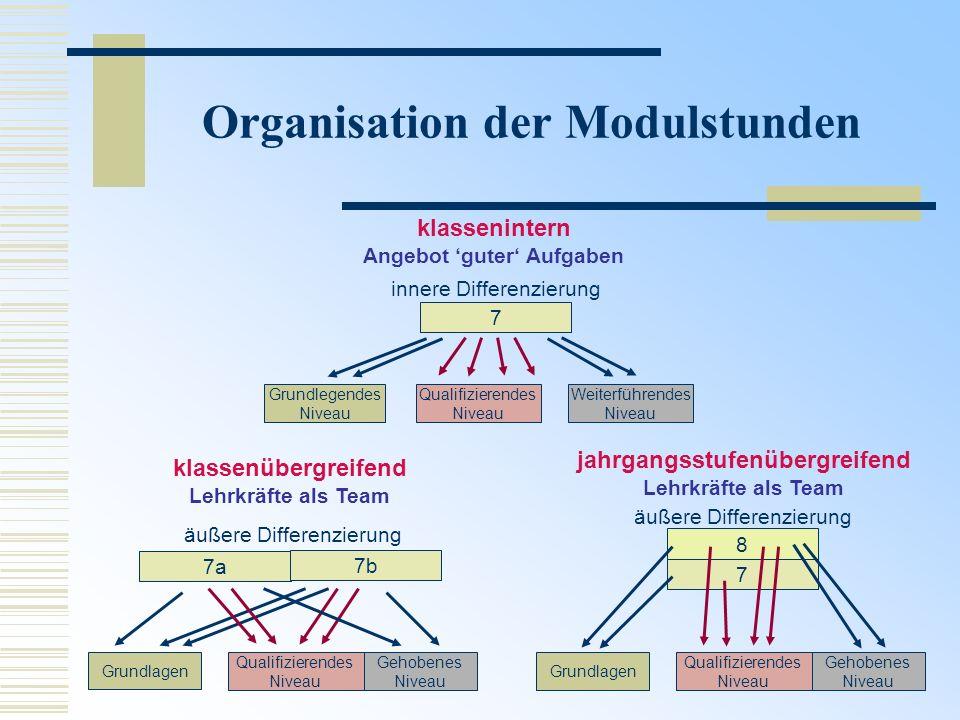 Organisation der Modulstunden