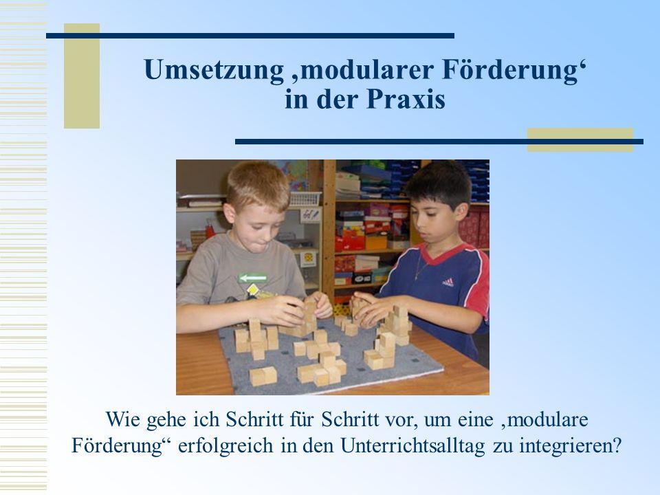 Umsetzung 'modularer Förderung' in der Praxis