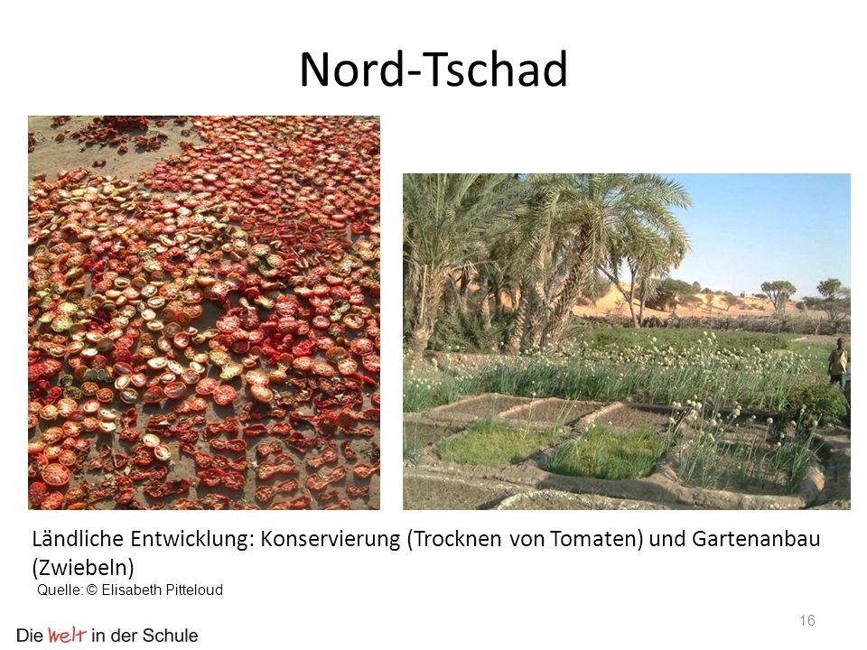 Nord-Tschad Ländliche Entwicklung: Konservierung (Trocknen von Tomaten) und Gartenanbau (Zwiebeln) Quelle: © Elisabeth Pitteloud.