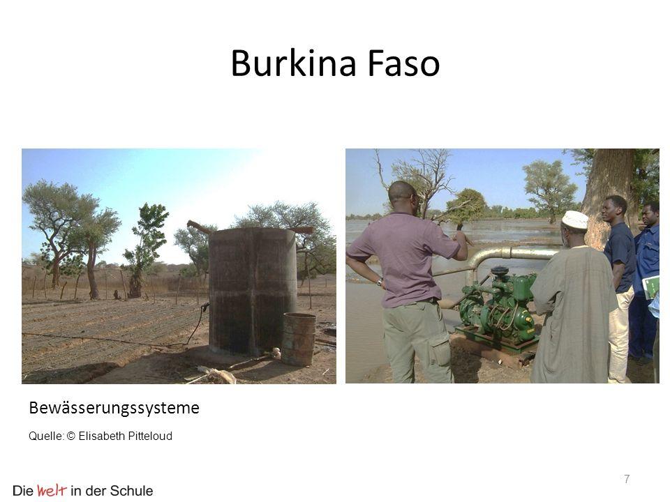 Burkina Faso Bewässerungssysteme Quelle: © Elisabeth Pitteloud