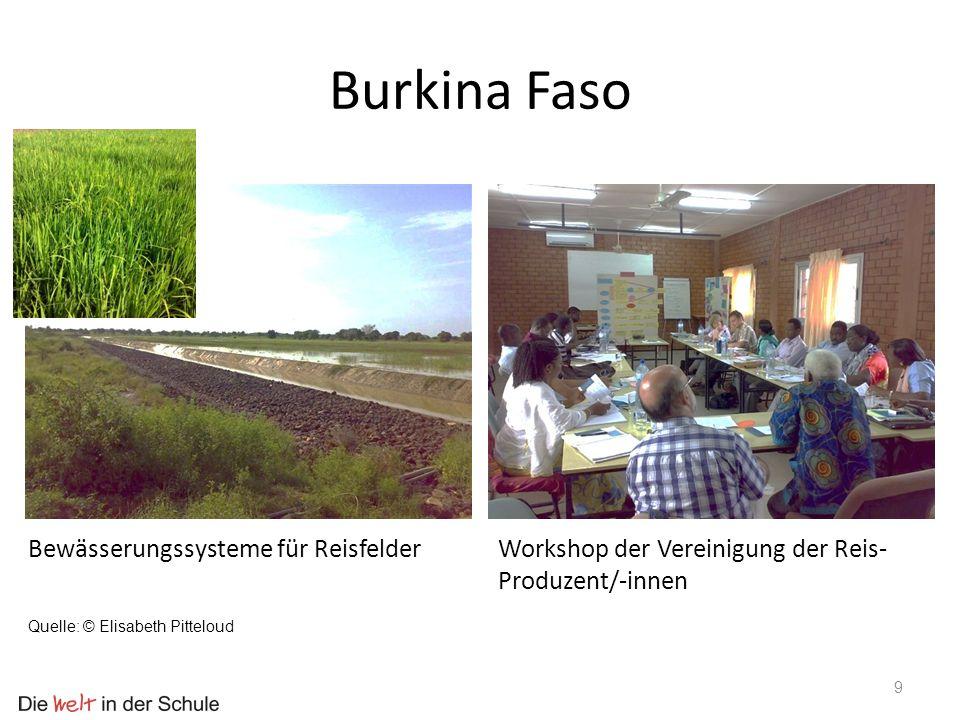 Burkina Faso Bewässerungssysteme für Reisfelder