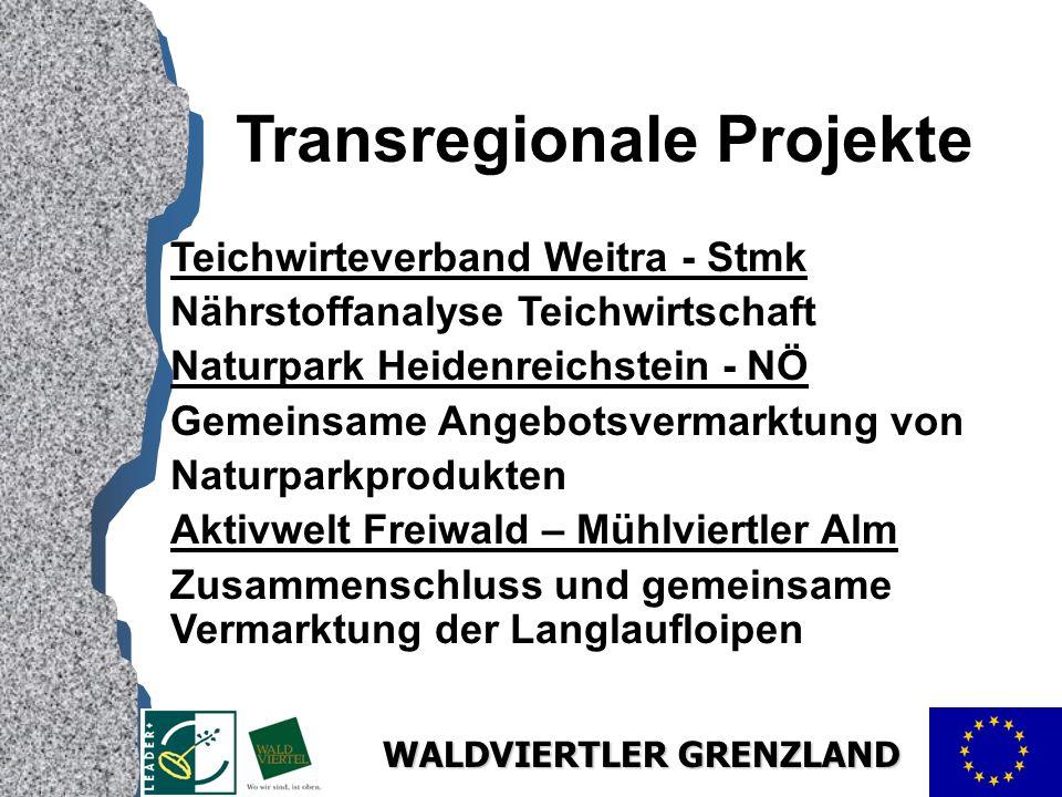 Transregionale Projekte