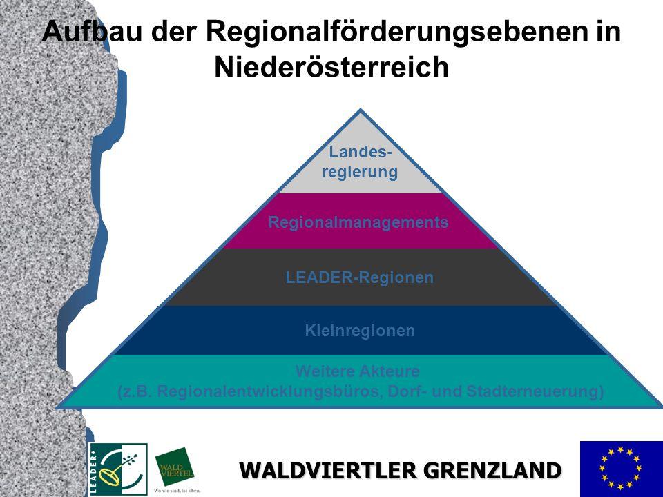 Aufbau der Regionalförderungsebenen in Niederösterreich