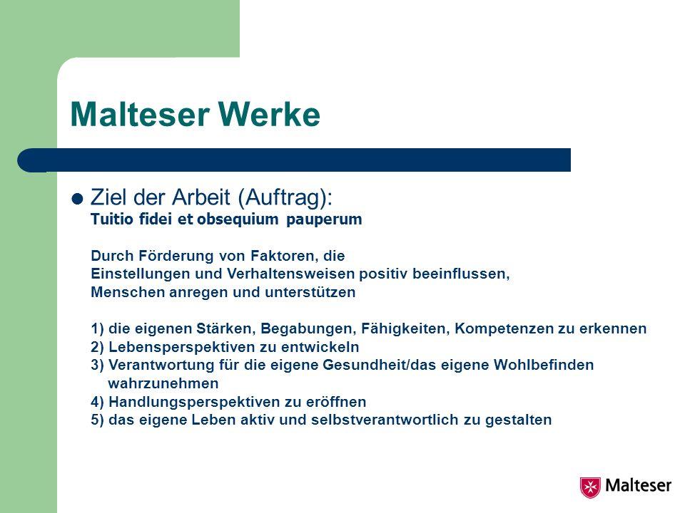 Malteser Werke Ziel der Arbeit (Auftrag):