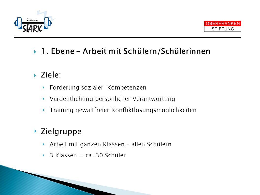 1. Ebene – Arbeit mit Schülern/Schülerinnen Ziele: