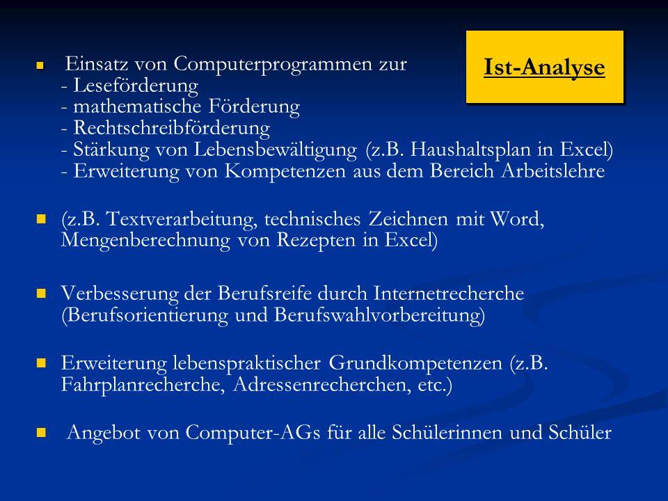 Ist-Analyse