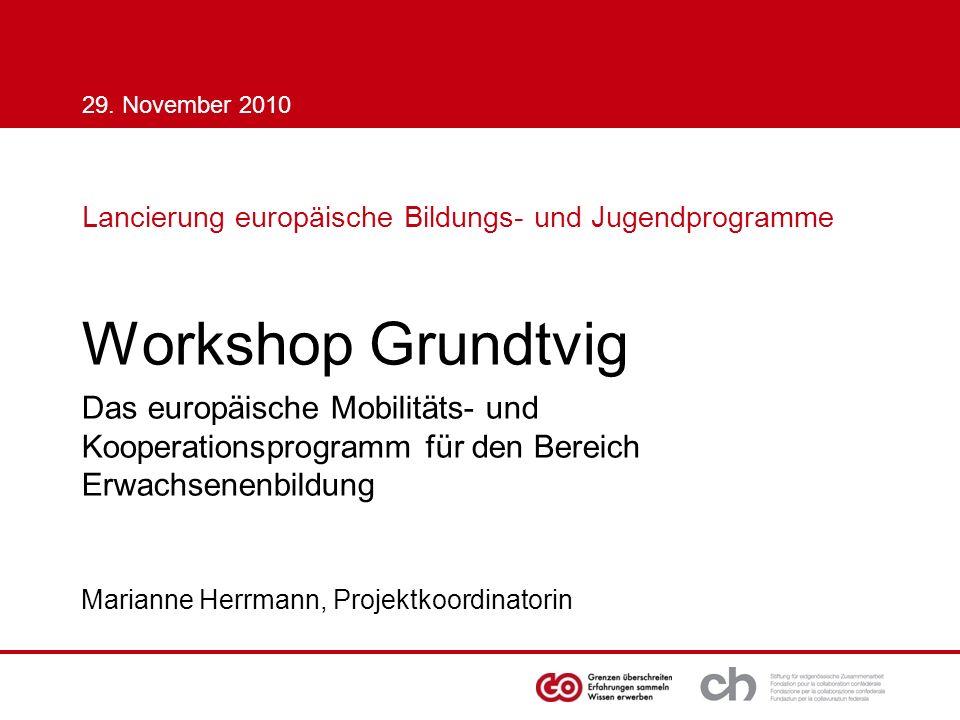 29. November 2010 Lancierung europäische Bildungs- und Jugendprogramme Workshop Grundtvig.