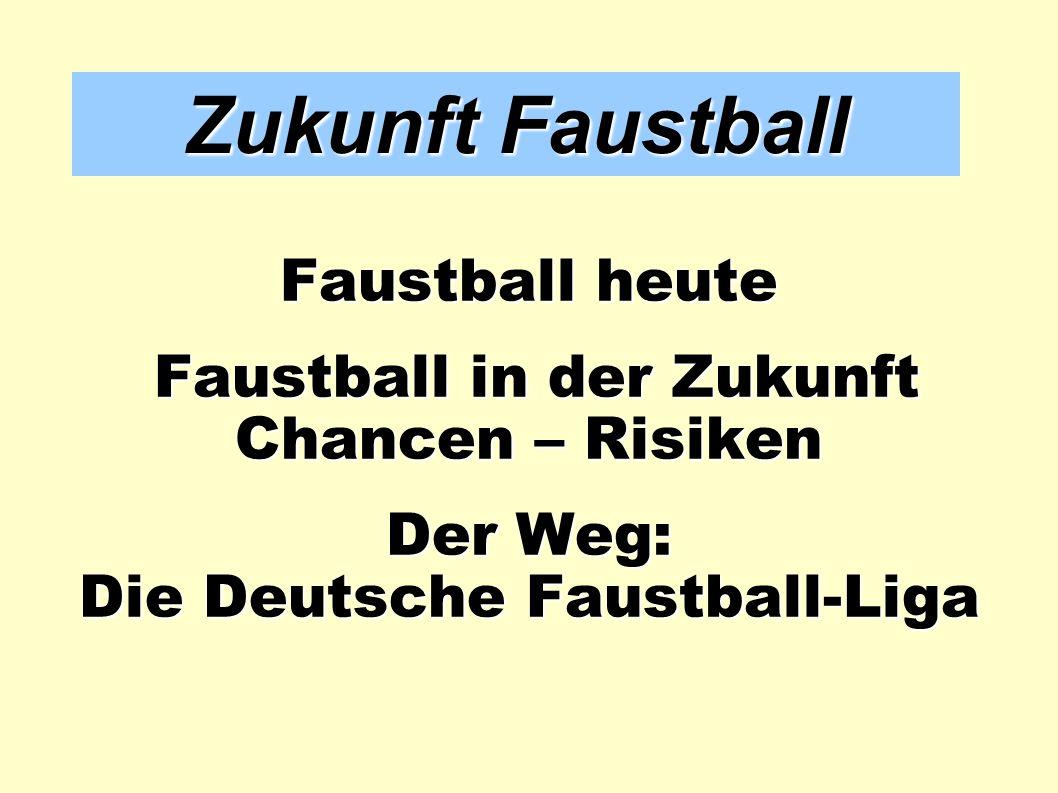 Faustball in der Zukunft Die Deutsche Faustball-Liga