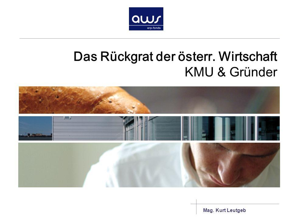 Das Rückgrat der österr. Wirtschaft KMU & Gründer