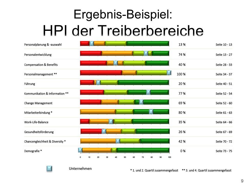 Ergebnis-Beispiel: HPI der Treiberbereiche