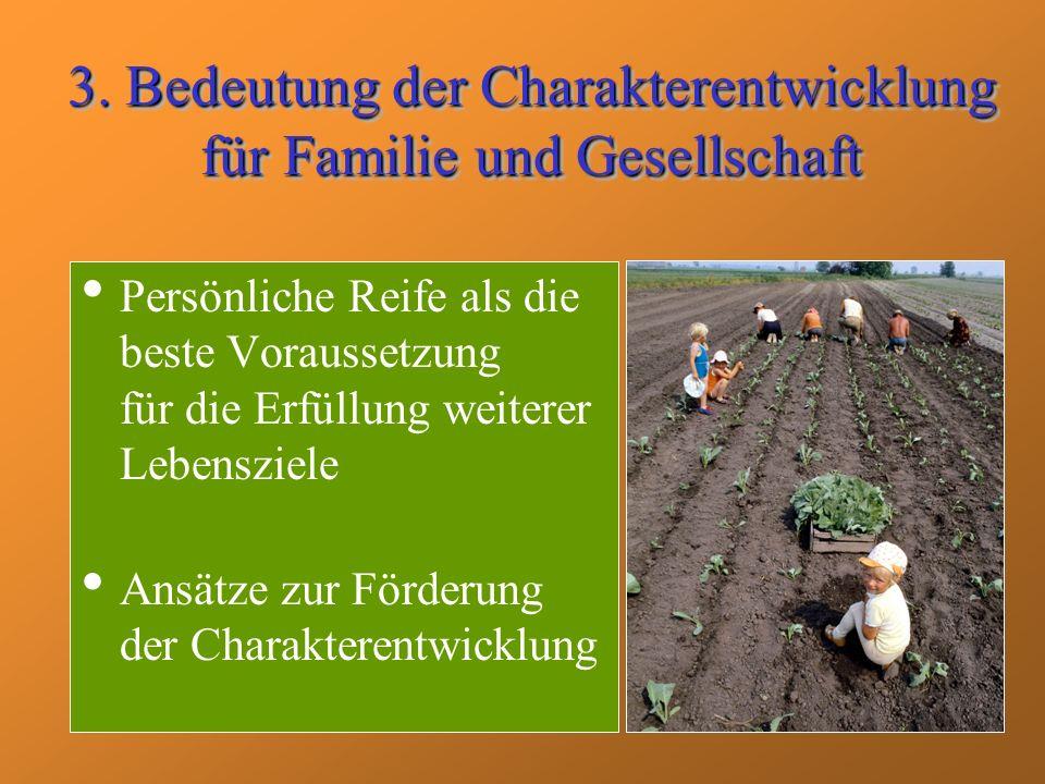 3. Bedeutung der Charakterentwicklung für Familie und Gesellschaft
