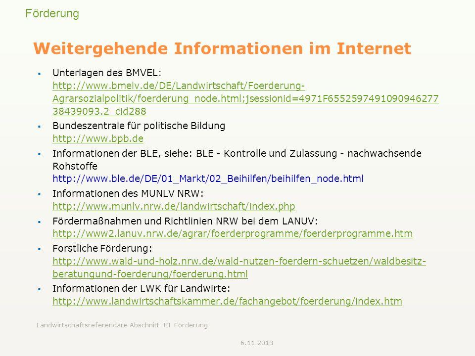 Weitergehende Informationen im Internet