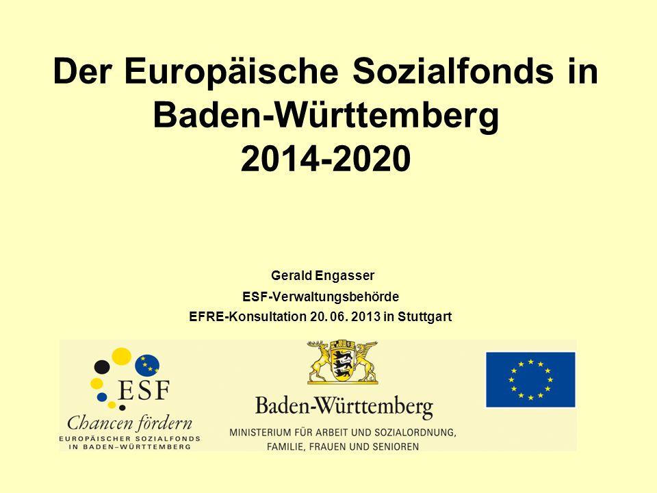 Der Europäische Sozialfonds in Baden-Württemberg 2014-2020