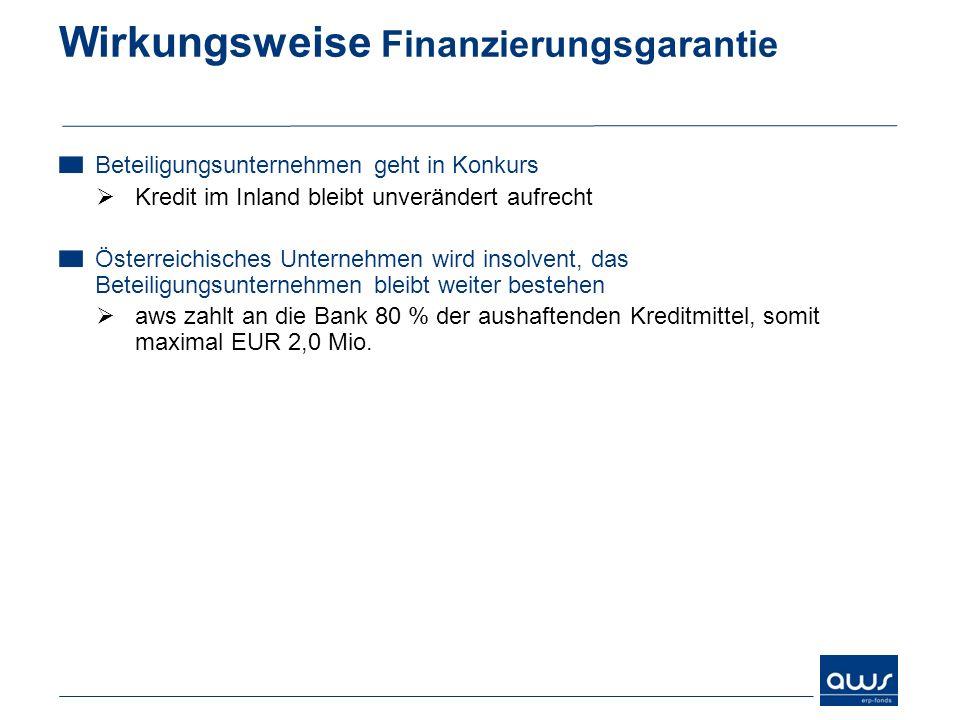 Wirkungsweise Finanzierungsgarantie