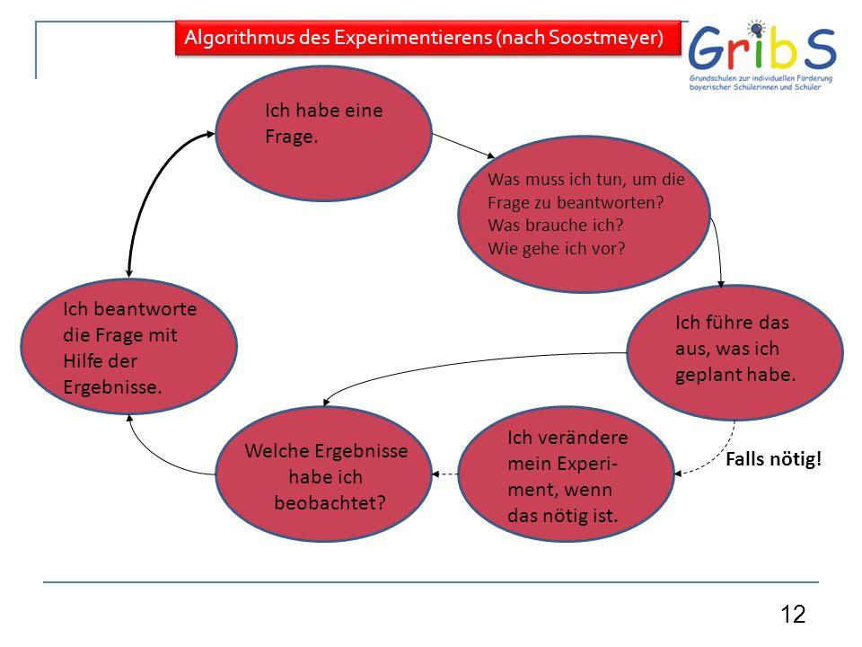 Algorithmus des Experimentierens (nach Soostmeyer)