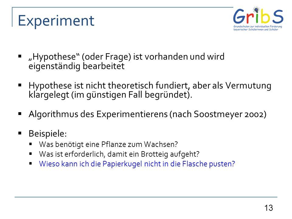 """Experiment """"Hypothese (oder Frage) ist vorhanden und wird eigenständig bearbeitet."""