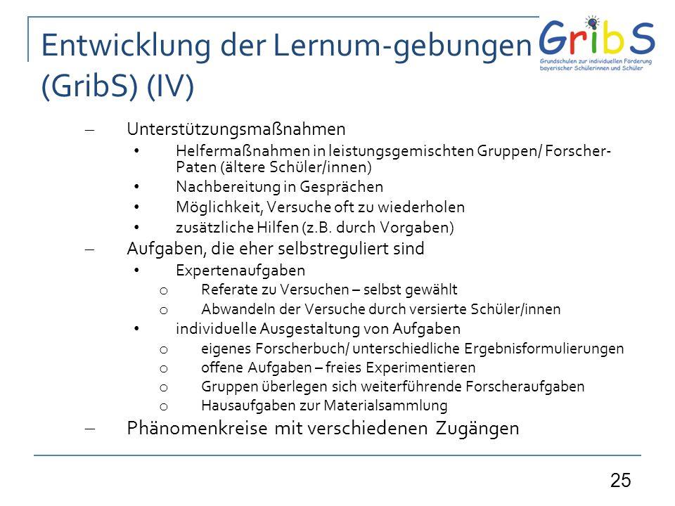 Entwicklung der Lernum-gebungen (GribS) (IV)