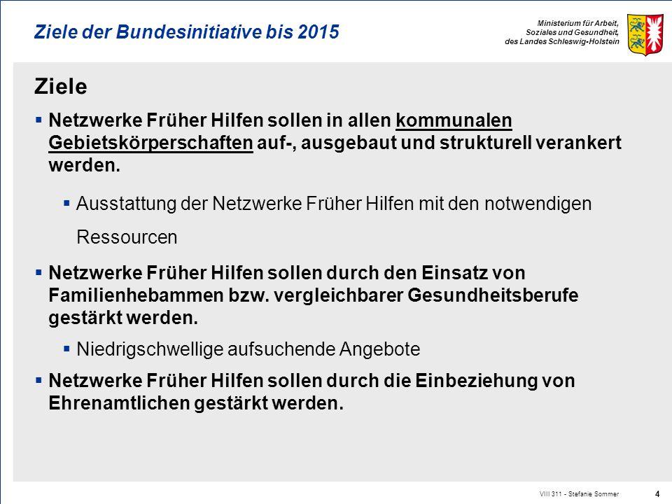 Ziele der Bundesinitiative bis 2015