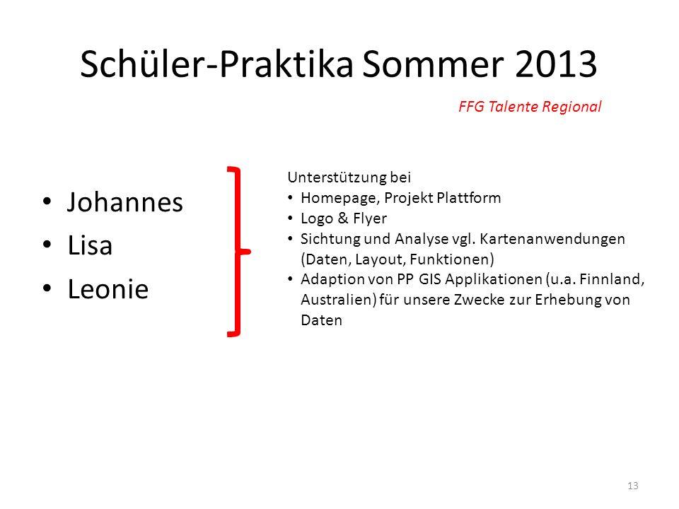 Schüler-Praktika Sommer 2013