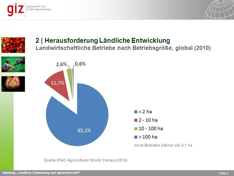 2 | Herausforderung Ländliche Entwicklung Landwirtschaftliche Betriebe nach Betriebsgröße, global (2010)