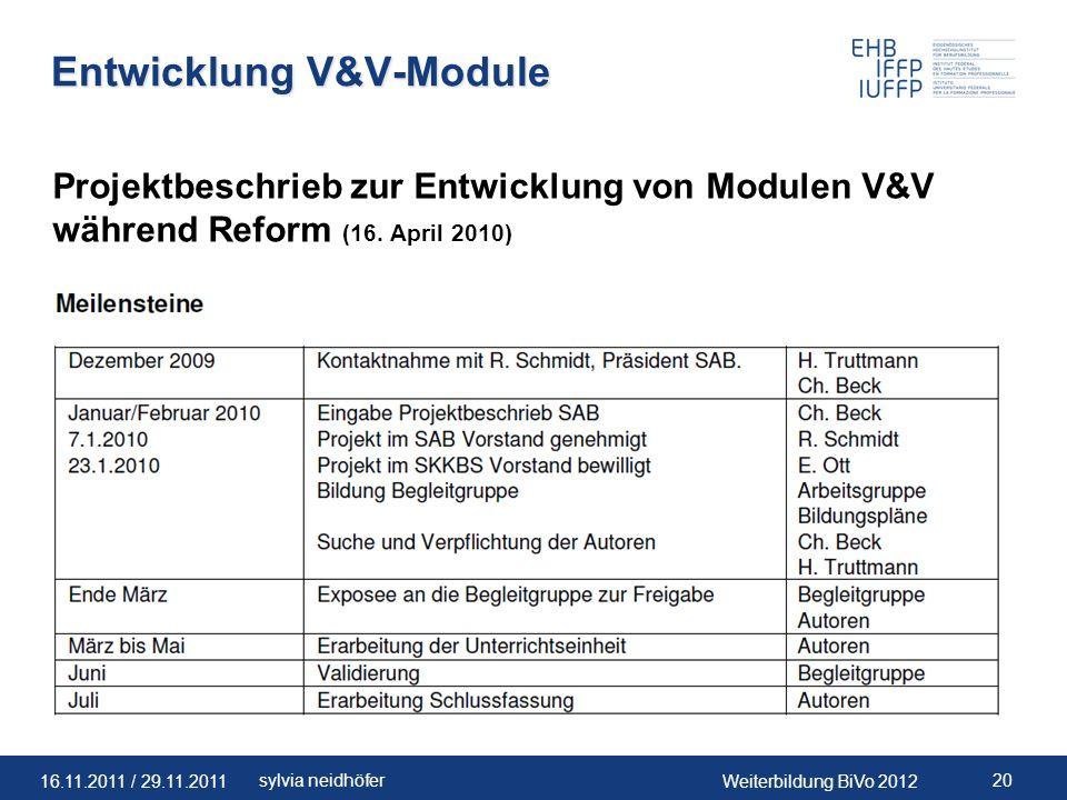 Entwicklung V&V-Module