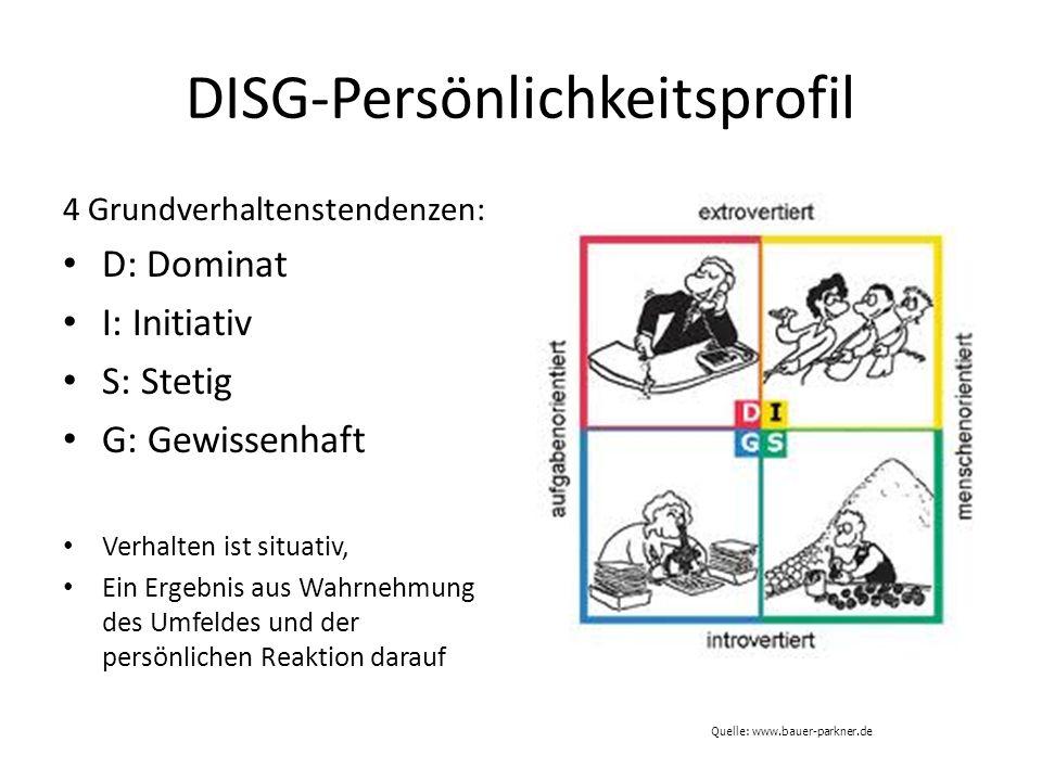 DISG-Persönlichkeitsprofil