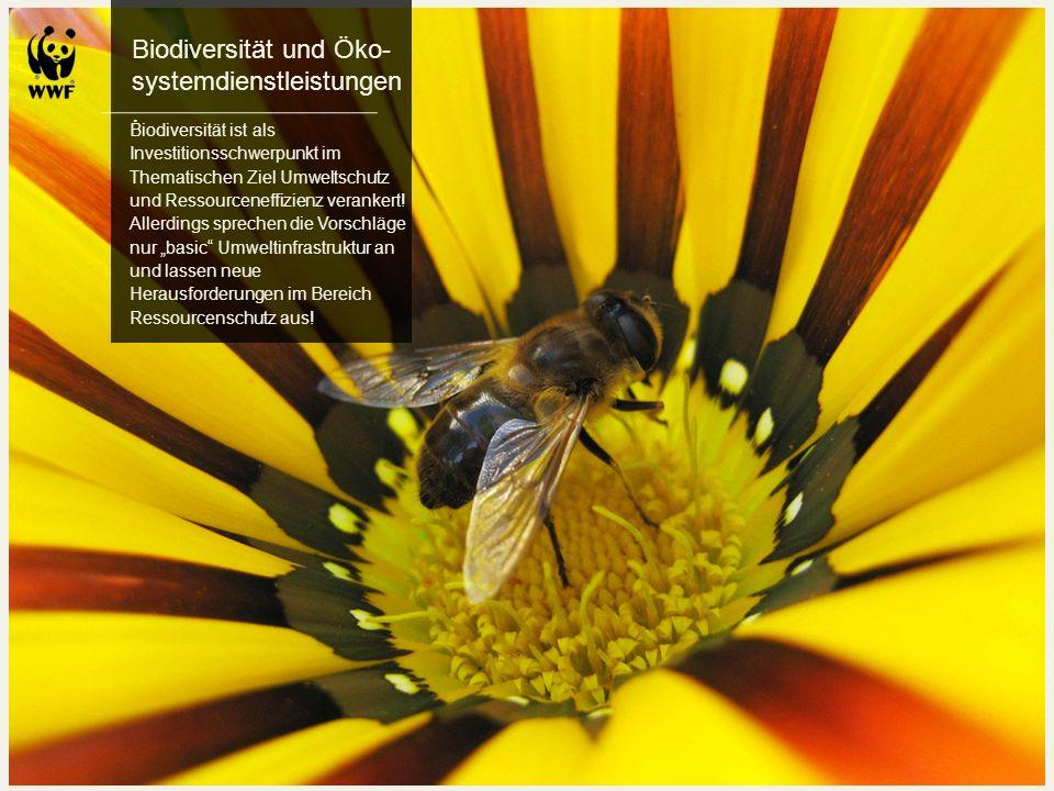 Biodiversität und Öko-systemdienstleistungen.