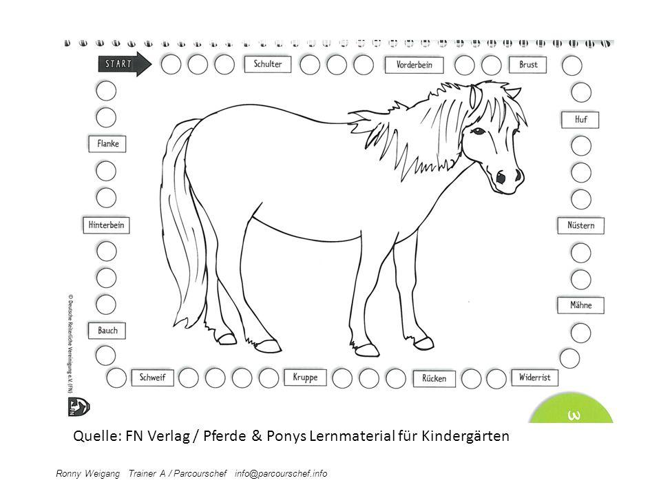 Quelle: FN Verlag / Pferde & Ponys Lernmaterial für Kindergärten