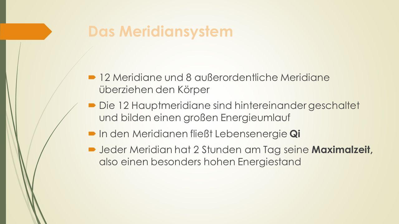 Das Meridiansystem 12 Meridiane und 8 außerordentliche Meridiane überziehen den Körper.