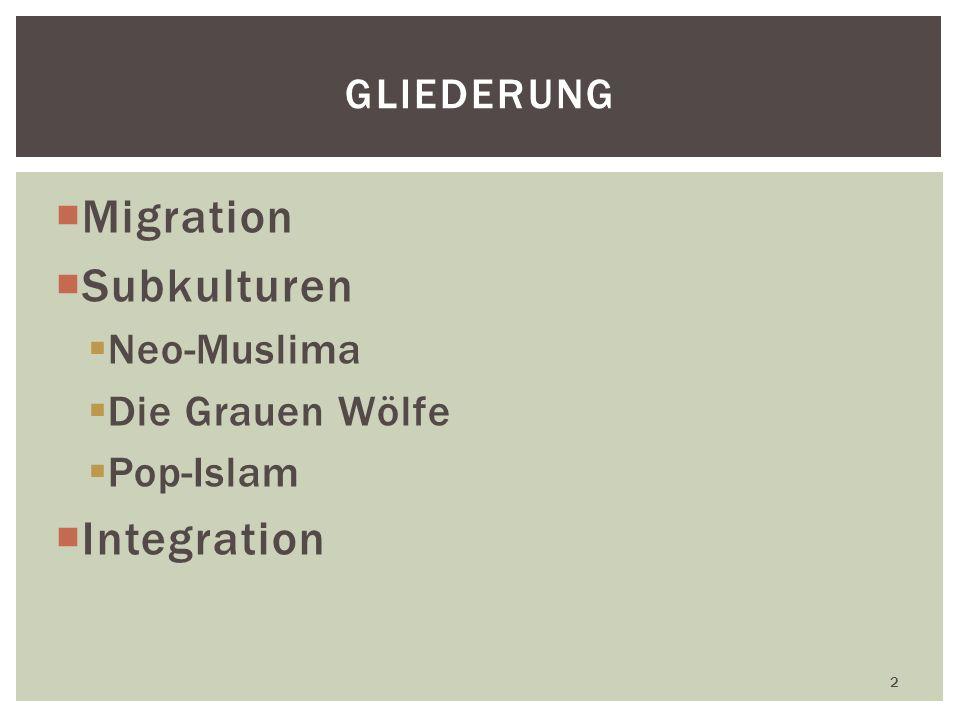 Migration Subkulturen Integration Gliederung Neo-Muslima